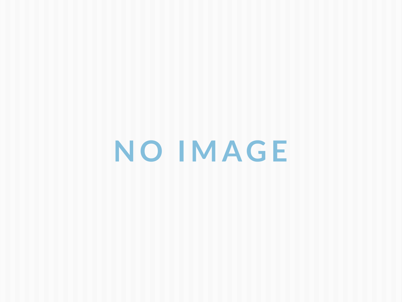 三崎港でマグロを食べる・犬連れプチ旅【追記あり】