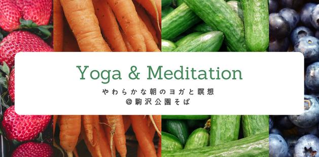 2/21 ヨガ&瞑想 @駒沢公園そば