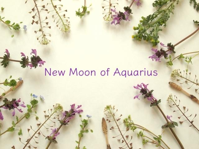 <部分日食>新月満月の星読み・2/16 水瓶座の新月