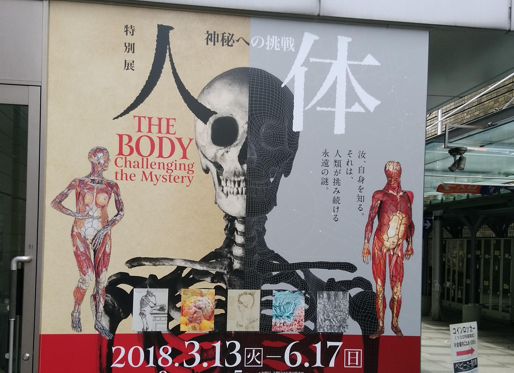 国立科学博物館・特別展「人体 -神秘への挑戦-」行ってきました