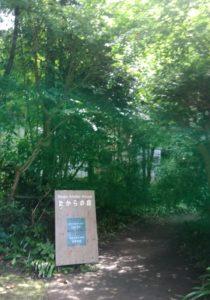 <北鎌倉>9/25・ヨガクラス&瞑想クラスはじめます