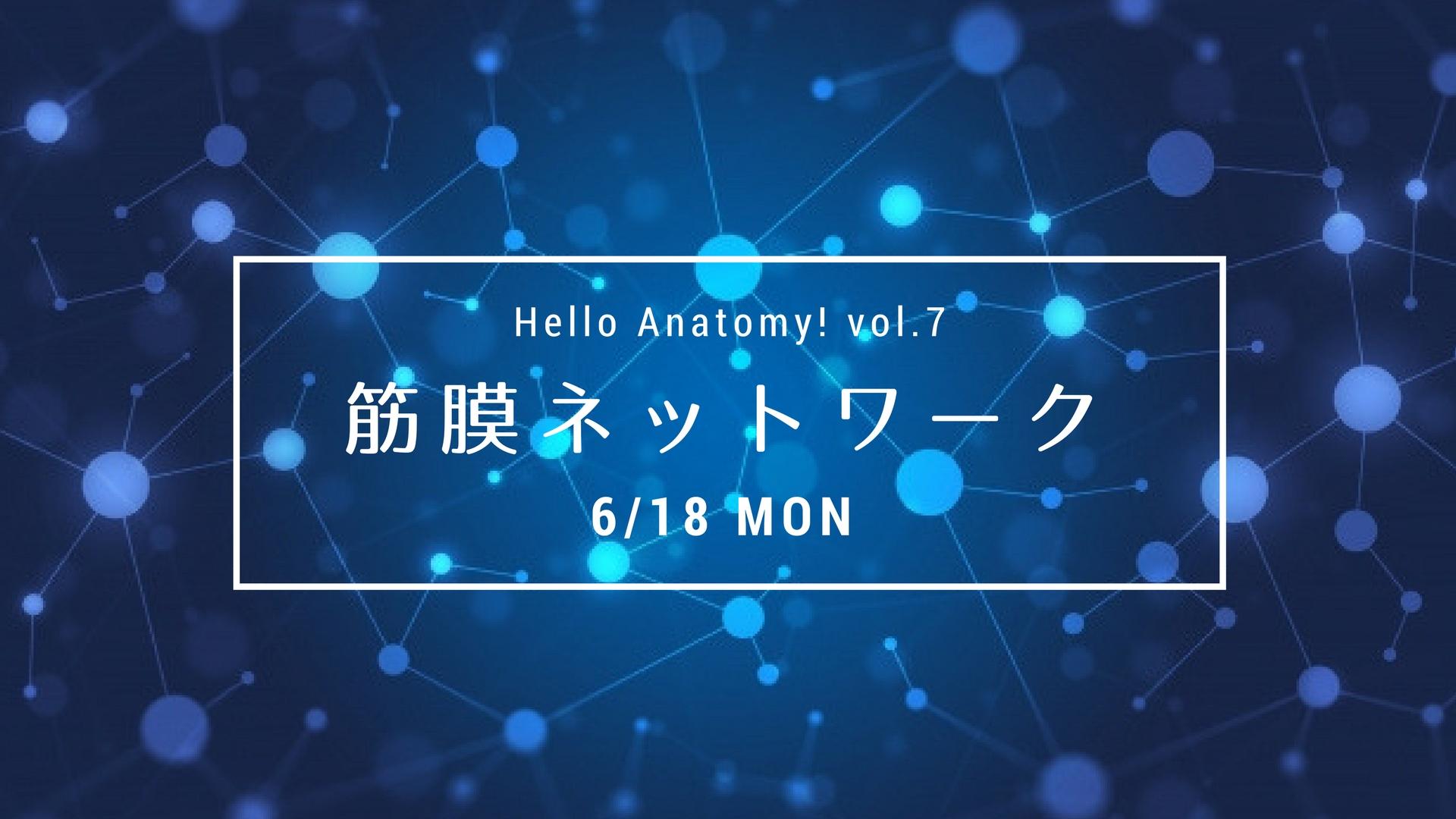 わかりやすい解剖学・Hello Anatomy! vol.7『筋膜ネットワーク』
